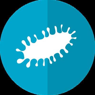 关于梅毒螺旋体感染引起的流产
