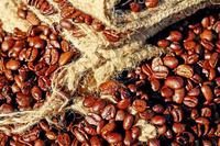 咖啡能治哮喘