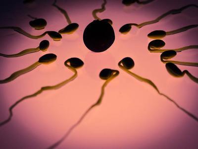 ?男人的精子有什么好处呢