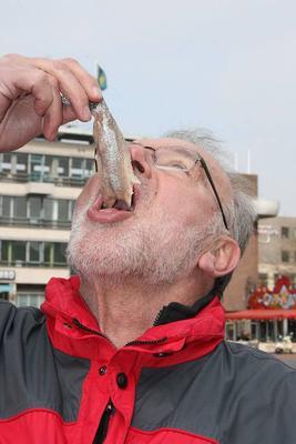 ?老人多吃鱼可预防中风又长寿