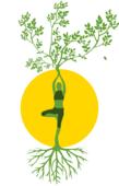 瑜伽单脚站立姿势 可以起到塑身燃脂的功效