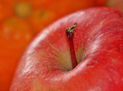 牛皮癣患者宜常吃五种水果