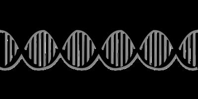 癫痫病遗传几率是多少呢