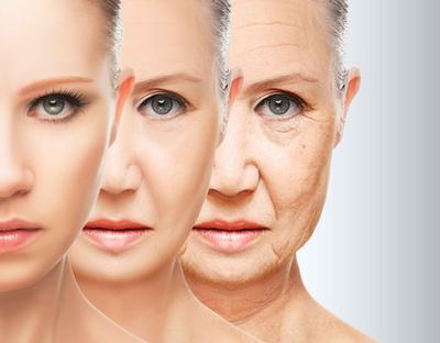 ?衰老并非是坏事 智力可不变