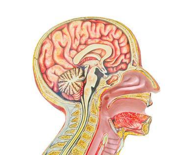 垂体微腺瘤需长期服用溴隐亭吗 了解垂体微腺瘤用药禁忌