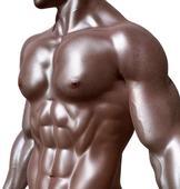 胸肌锻炼方法最快的有哪些 锻炼胸肌的两个方法