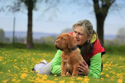被动物抓伤多久内打狂犬疫苗 狂犬病的预防