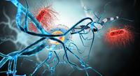 基因编辑人体临床试验将在美国启动,用于治疗遗传疾病