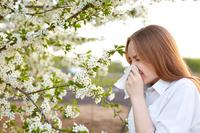 什么花能防辐射 防辐射效果好几种植物推荐